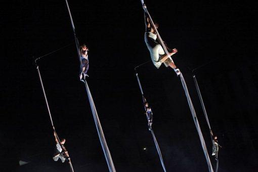 aerial dance