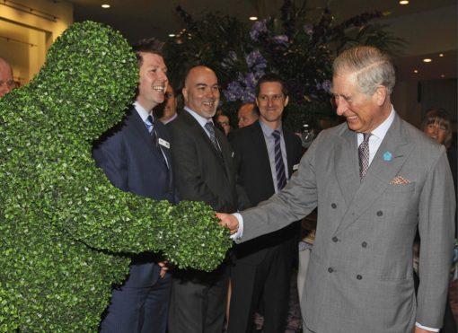 hedge men