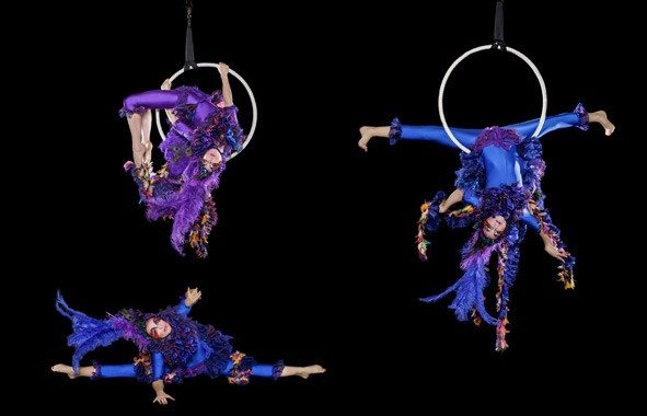 Aerial Birdcage Corporate Entertainment Agency And Events