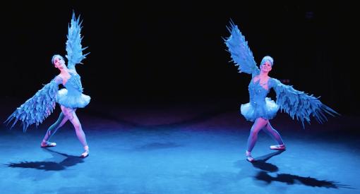 Winged Ballerina
