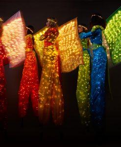 LED flag Performers