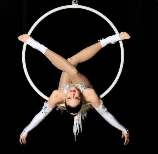 Aerial Hoops