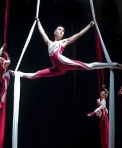 Aerial and Acrobats