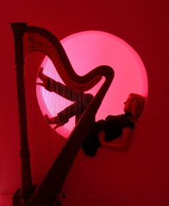 Bombay Harp for hire
