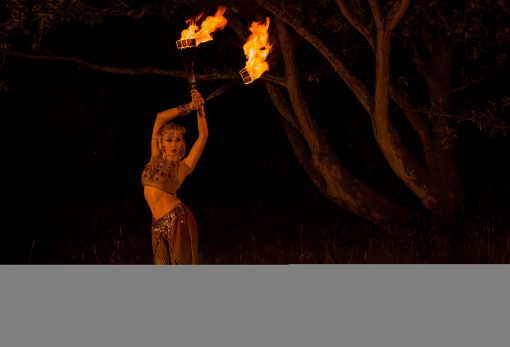 fire artist lily