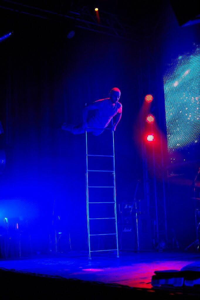 Ladder Balance Artist 1