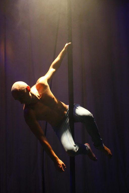 Ladder Balance Artist 2