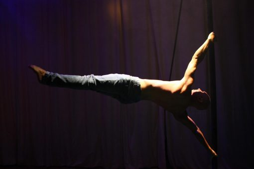 Ladder Balance Artist 4