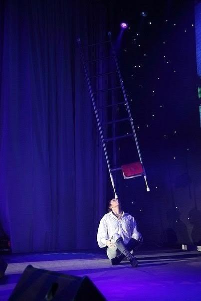 Ladder Balance Artist 6