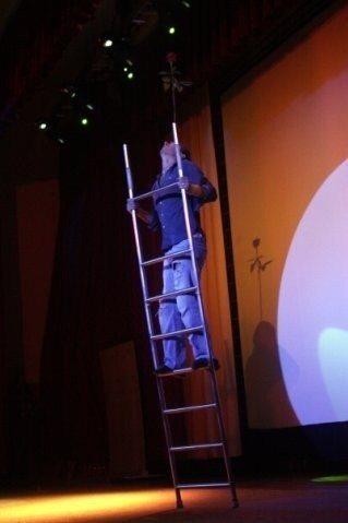 Ladder Balance Artist 7