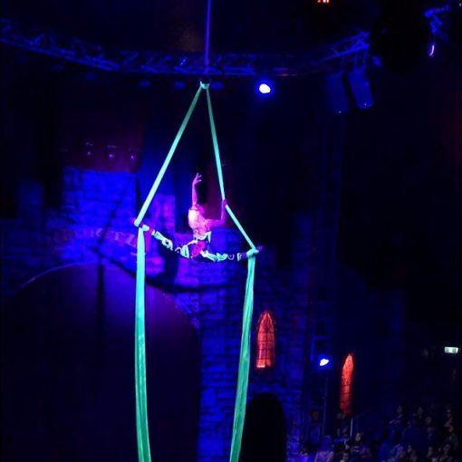 aerial artist dani