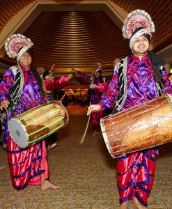 LED Dhol Drummers Singapore   Dhol Drummers for Hire