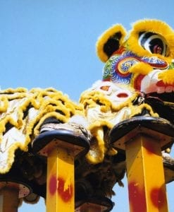 lion dance for hire