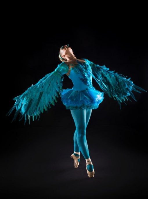 Winged Ballerina