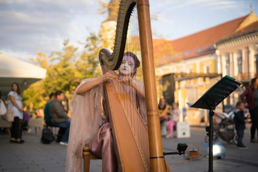Magical Acrobat and Harp Act
