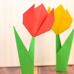 Virtual Origami Classes